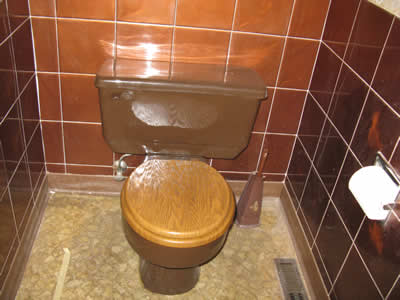 Yes that is a brown toilet